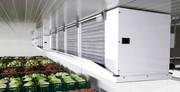 Овощехранилища. Холодильные и морозильные камеры.